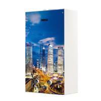 Водонагреватель газовый проточный Zanussi Fonte Glass GWH 10 (с изображением мегаполиса)